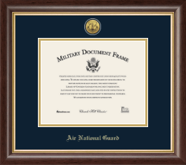 Air National Guard Certificate Frame - Gold Engraved Air National Guard Certificate Frame in Hampshire