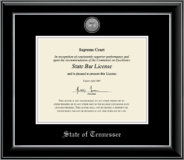 State of Tennessee Certificate Frame - Silver Engraved Medallion Certificate Frame in Onyx Silver