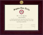 Sigma Tau Delta Honor Society Certificate Frame - Century Gold Engraved Certificate Frame in Cordova