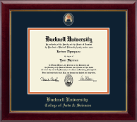 Bucknell University Diploma Frame - Masterpiece Medallion Diploma Frame in Gallery
