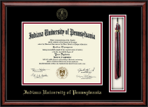 Indiana University of Pennsylvania Diploma Frame - Tassel Edition Diploma Frame in Southport