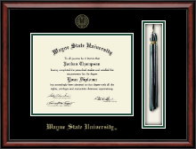 Wayne State University Diploma Frame - Tassel Edition Diploma Frame in Southport