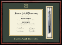 Florida A&M University Diploma Frame - Tassel Edition Diploma Frame in Southport