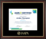 International Association of Amusement Parks and Attractions Certificate Frame - Gold Embossed Certificate Frame in Studio Gold