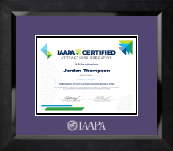 International Association of Amusement Parks and Attractions Certificate Frame - Silver Embossed Certificate Frame in Eclipse