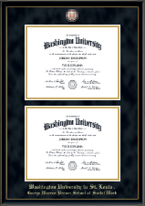 Washington University in St. Louis Diploma Frame - Double Diploma Masterpiece Medallion Frame in Onexa Gold