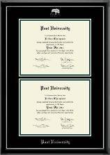 Post University Diploma Frame - Double Diploma Frame in Onyx Silver