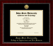 Iowa State University Diploma Frame - Gold Engraved Medallion Diploma Frame in Sutton