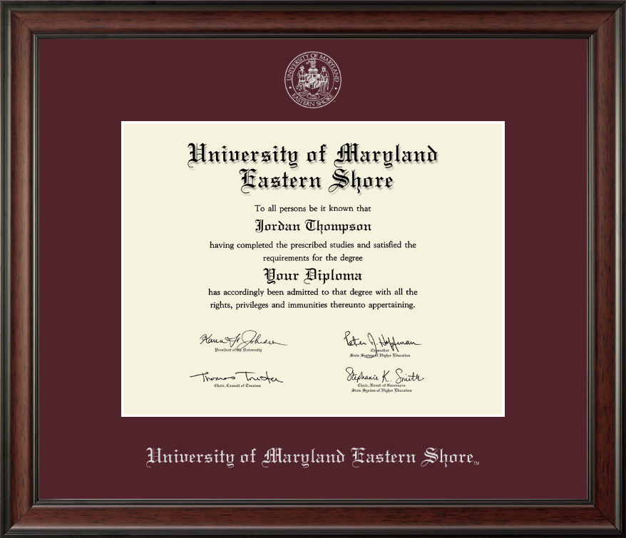 University Of Maryland Eastern Shore Silver Embossed