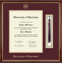 University of Charleston Diploma Frame - Tassel Edition Diploma Frame in Southport Gold