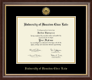 University of Houston-Clear Lake Diploma Frame - Gold Engraved Medallion Diploma Frame in Hampshire