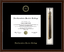 Northeastern Junior College Diploma Frame - Tassel Edition Diploma Frame in Delta