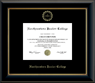 Northeastern Junior College Diploma Frame - Gold Embossed Diploma Frame in Onyx Gold