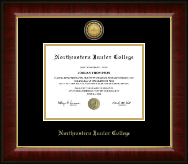 Northeastern Junior College Diploma Frame - Gold Engraved Medallion Diploma Frame in Murano