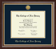 The College of New Jersey Diploma Frame - Gold Engraved Medallion Diploma Frame in Hampshire