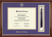 Waldorf College Diploma Frame - Tassel Edition Diploma Frame in Southport Gold