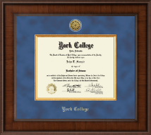 York College of Nebraska Diploma Frame - Presidential Gold Engraved Diploma Frame in Madison