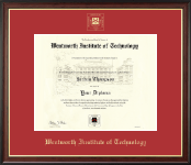 Wentworth Institute of Technology Diploma Frame - Gold Embossed Diploma Frame in Studio Gold