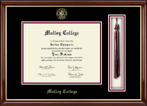 Molloy College Diploma Frame - Tassel Edition Diploma Frame in Southport Gold