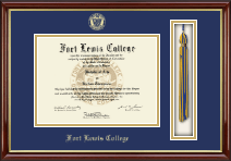 Fort Lewis College Diploma Frame - Tassel Edition Diploma Frame in Southport Gold