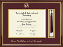 Texas A&M International University in Laredo Diploma Frame - Tassel Edition Diploma Frame in Southport Gold