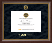 Delaware College of Art and Design Diploma Frame - Gold Engraved Medallion Diploma Frame in Hampshire