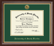 University of South Florida Health Sciences Diploma Frame - Gold Engraved Medallion Diploma Frame in Hampshire