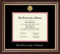 University of Tampa Diploma Frame - Gold Engraved Medallion Diploma Frame in Hampshire
