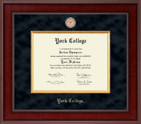 York College in New York Diploma Frame - Presidential Masterpiece Diploma Frame in Jefferson