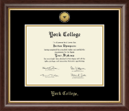 York College in New York Diploma Frame - Gold Engraved Medallion Diploma Frame in Hampshire