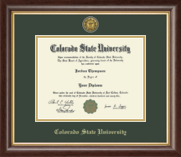 Colorado State University Diploma Frame - Gold Engraved Medallion Diploma Frame in Hampshire
