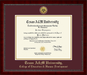 Gold Engraved Medallion Diploma Frame