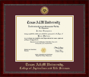 Texas A&M University Diploma Frame - Gold Engraved Medallion Diploma Frame in Sutton