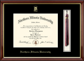 Northern Illinois University Diploma Frame - Tassel Edition Diploma Frame in Southport Gold