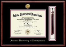 Indiana University of Pennsylvania Diploma Frame - Gold Engraved Tassel Edition Diploma Frame in Southport