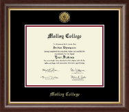 Molloy College Diploma Frame - Gold Engraved Medallion Diploma Frame in Hampshire