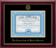 The Consortium of Sterile Sciences Diploma Frame - Gold Embossed Diploma Frame in Gallery