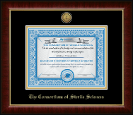 The Consortium of Sterile Sciences Diploma Frame - Gold Engraved Medallion Diploma Frame in Murano