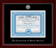 The Consortium of Sterile Sciences Diploma Frame - Silver Engraved Medallion Diploma Frame in Sutton