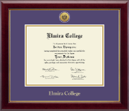 Elmira College Diploma Frame - Gold Engraved Medallion Diploma Frame in Gallery