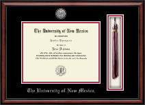 The University of New Mexico Diploma Frame - Silver Engraved Medallion & Tassel Diploma Frame in Southport