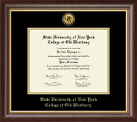 SUNY The College of Old Westbury Diploma Frame - Gold Engraved Medallion Diploma Frame in Hampshire
