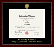 The University of Georgia Diploma Frame - Gold Engraved Medallion Diploma Frame in Sutton