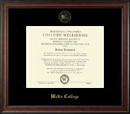 Wells College Diploma Frame - Gold Embossed Diploma Frame in Studio