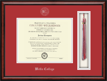 Wells College Diploma Frame - Tassel Edition Diploma Frame in Southport