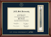 A.T. Still University Diploma Frame - Tassel Edition Diploma Frame in Southport Gold
