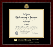 The University of Tennessee Health Science Center Memphis Diploma Frame - Gold Engraved Medallion Diploma Frame in Sutton