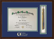 Florida Gulf Coast University Diploma Frame - Tassel Edition Diploma Frame in Delta