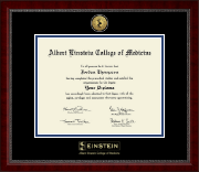 Albert Einstein College of Medicine Diploma Frame - Gold Engraved Medallion Diploma Frame in Sutton