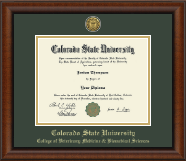 Colorado State University Diploma Frame - Gold Engraved Medallion Diploma Frame in Austin
